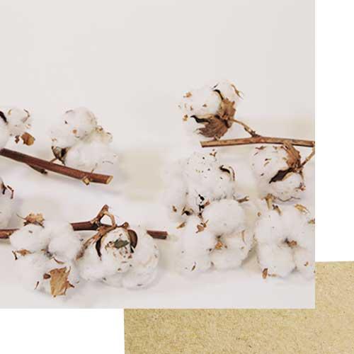 coton biologique - mouchoirs lavables