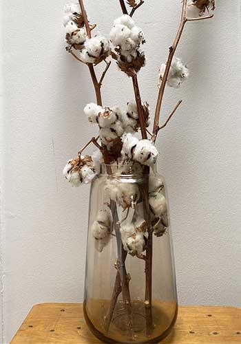 coton bio fabrication artisanal mouchoirs en tissu bio ernest et lulu